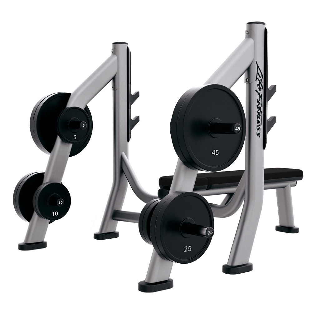OLYMPIC BENCH WEIGHT STORAGE