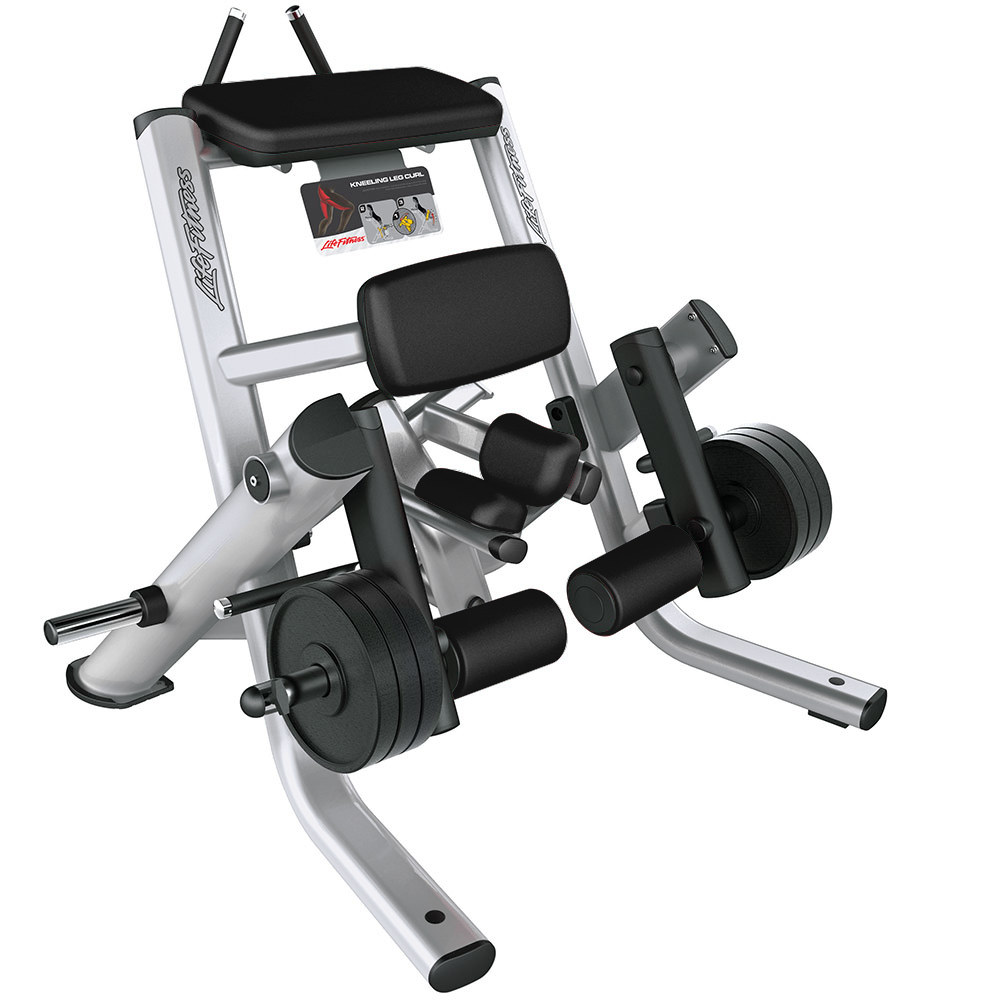 SIGNATURE SERIES KNEELING LEG CURL
