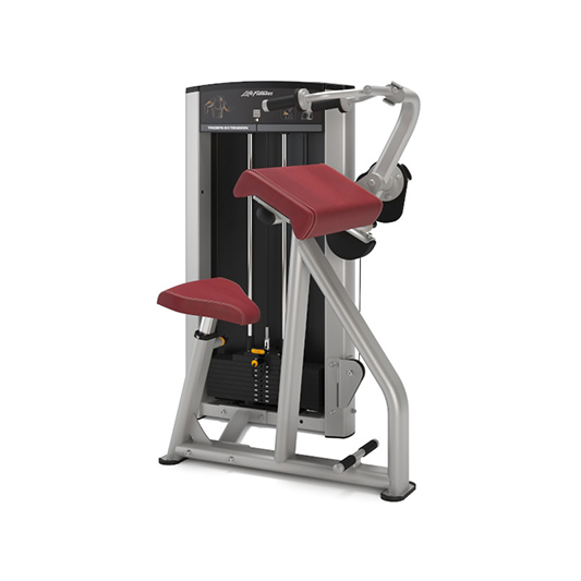 Life Fitness Axiom Series Triceps Extension
